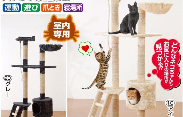 猫のスキが詰まった多機能キャットタワー