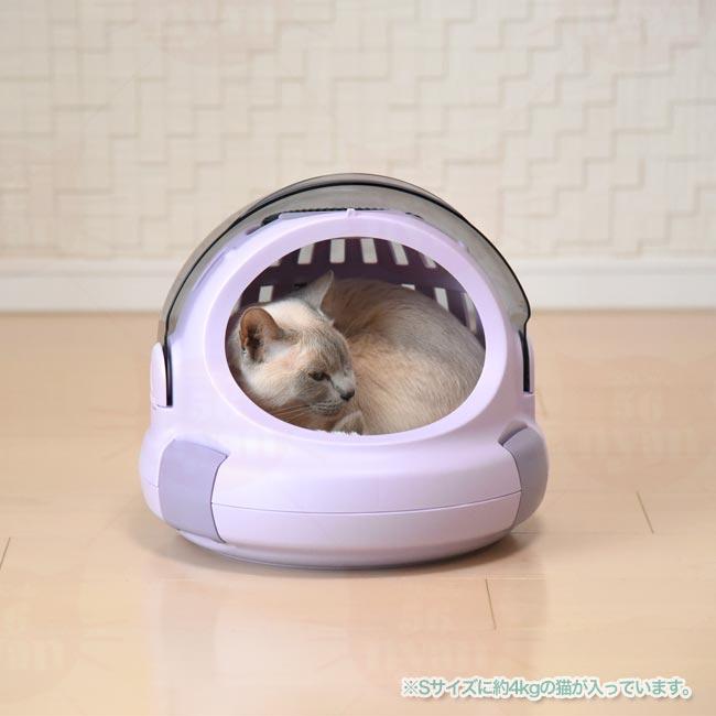 丸まって寝る猫ちゃんにピッタリの円形。