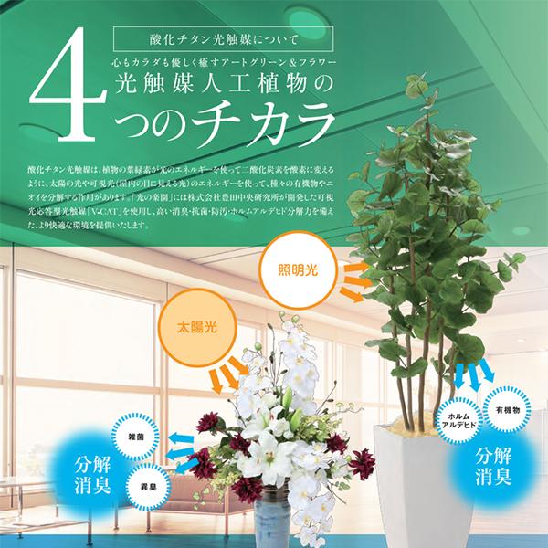 光触媒人工植物の4つのチカラ