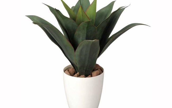 「ドラセナ」43cm 光触媒 人工植物/フェイクグリーン