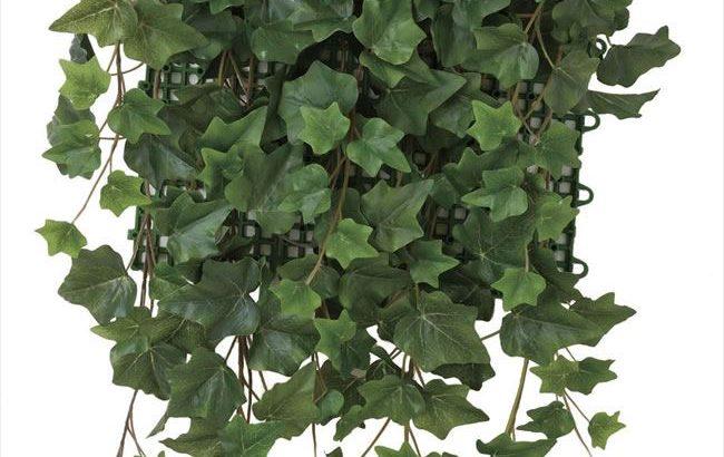 葉っぱがかわいい「アイビー」壁面緑化 人工植物/フェイクグリーン